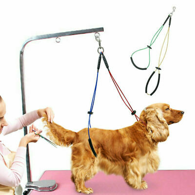 No-Sit Pet Haunch Holder Dog Restraint Grooming Harness Leash Loop for Table