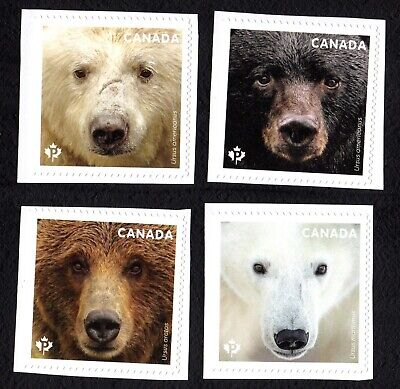 Canada 2019 Bear ; Single  from Booklet ;  MINT NH VF