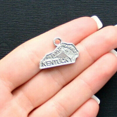 BULK 25 Skeleton Charms Antique Silver Tone with Great Details SC1888