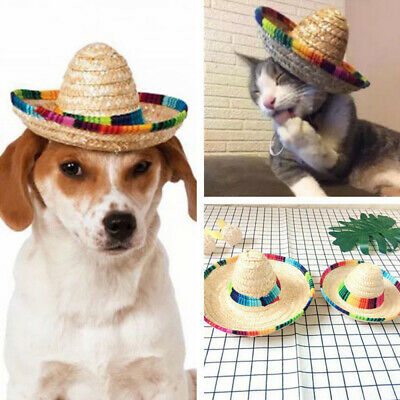 Beautiful Colorful Makeup Funny Pet Cap Cosplay Costume Woven Cap for Cat