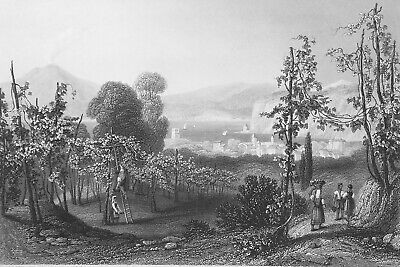 ITALY Vesuvius Monte Chiaro Village Meta - 1858 SUPERB Antique Print Engraving