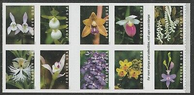 US Wild Orchids forever block set (10 stamps) MNH 2020