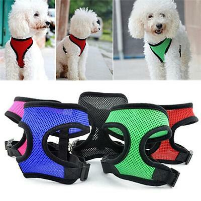Adjustable Soft Mesh Fabric Dog Puppy Pet Padded Harness Vest Lead Leash CH
