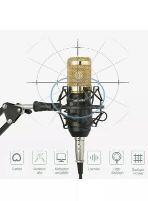 ZINGYOU Condenser Microphone Bundle, BM-800 Mic Gold - Adjustable Mic - Mount