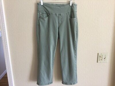 Jag Jeans Womens Pull On Stretch Straight Sage Green Capri Pants - Size 6