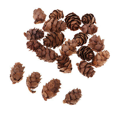 50x Mini Real Natural Pine Cones for Home Garden Decoration DIY Garland 20mm
