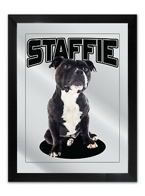 Bar Mirror Staffordshire Bull Terrier Dog A3 Size Cute Puppy For Staffie Lovers