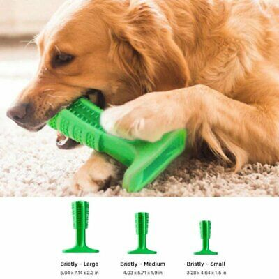 Bristly Brushing Stick World's Effective Toothbrush for Dogs Pets Oral Care New