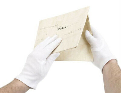 Archival White Cotton Gloves - Large 10 pack