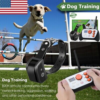 Outdoor Wireless Dog Training Shock Collar Fence Pet Electric Trainer System US