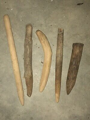 5 Primitive Antique North Carolina Tobacco Seed Planting Pegs