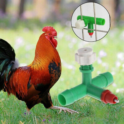10 Pcs Auto Chicken Feeder Water Drinker Cup Automatic Nipple Poultry Dispenser
