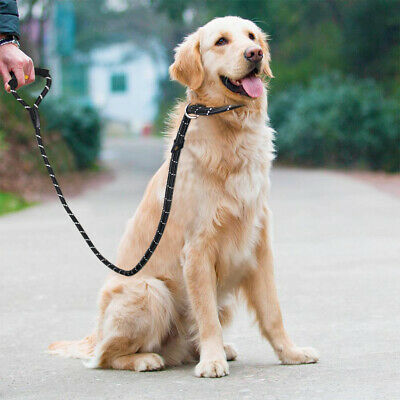 Strong Dog Rope Leash Lead Training Padded Handle Reflective Threaded Nylon