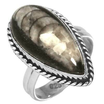 Fossil Orthoceras Solid 925 Sterling Silver Collectible Ring Size 6 rU54442