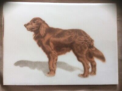 Vintage hand painted ceramic tile of Irish Setter, quality painting