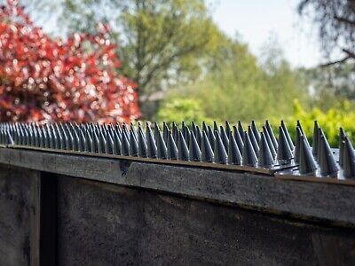 Fence Wall Spikes Garden Security Intruder Repellent Burglar Anti Cat Climb Bird
