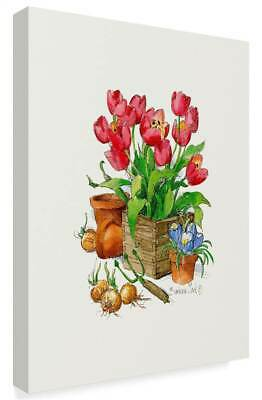 Barbara Mock 'Tulips In Bloom' Gallery-Wrapped Canvas Art [ID 3761634]