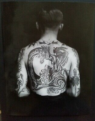print of vintage percy waters tattoo photo tattooed man back dragon pinup 11x14