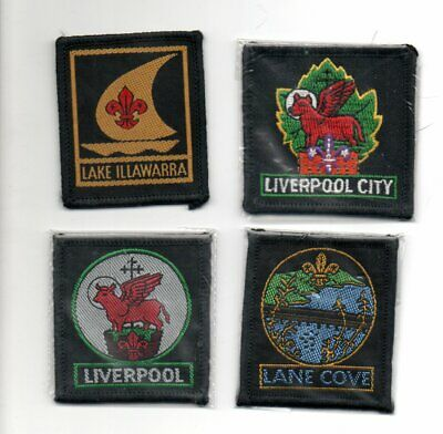 Nsw Scout Badges   (105)