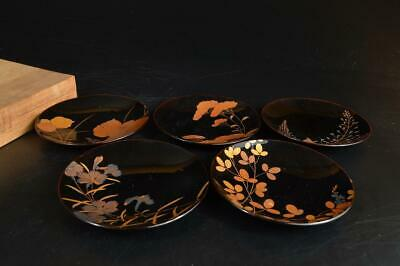 T9928: Japanese Wooden Lacquer ware SERVING PLATE/dish 5pcs, w/box