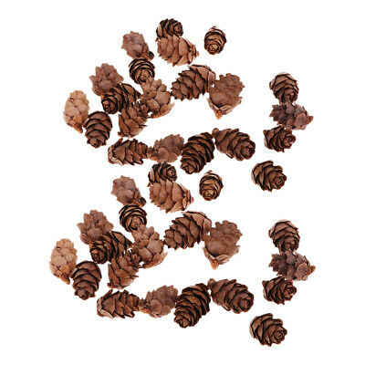 100pc Small Real Natural Pine Cones Christmas Tree Hangings Ornaments Decors
