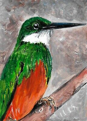 ACEO Original Painting Art Card Acrylic Rufous Tailed Jacamar 100% Hand Painted