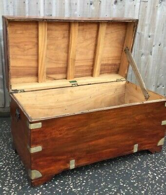 Trunk Chinese Camphor Wood