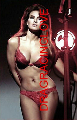 """Gorgeous Actress/Sex Symbol """"Raquel Welch"""" SEXY """"Lingerie"""" """"Pin-Up"""" PHOTO! #14ab"""