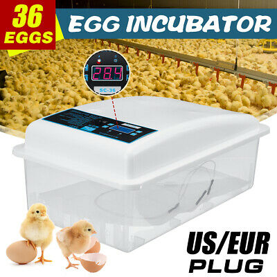 36 Eggs Dual Power Supply Turning Incubators Bird Chicken Duck Poultry Hatcher