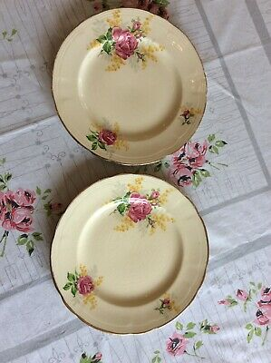 Vintage 1940s ALFRED MEAKIN MEAKIN ENGLAND Roses & Wattle Small Dinner Plates x2