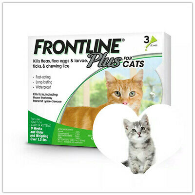 Genuine Frontline Plus Flea & Tick Control for Cats, 3 Months Supply
