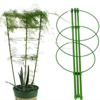 Durable Vine Climbing Rack Gardening Tools Plant Trellis Plant Support Frame.