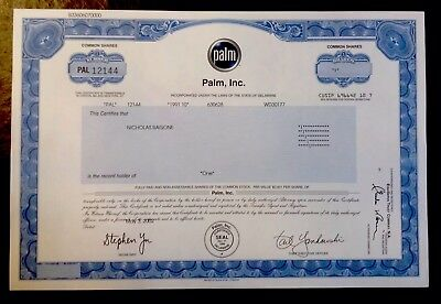 Rare-Palm  Inc. Stock Certificate-Hard To Find-Very Nice Condition!