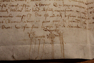 Rare 1494 medieval manuscript document Amazing signatures on parchment skin