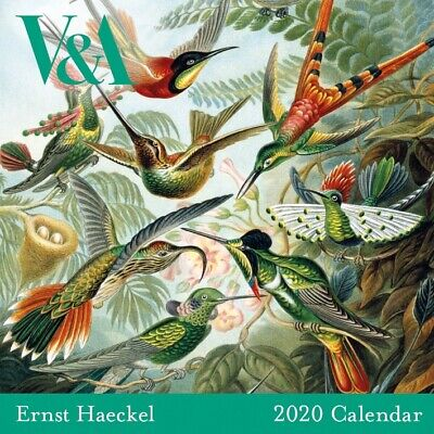 Art Forms in Nature 2020 Square Calendar - Vibrant works of Ernst Haeckel