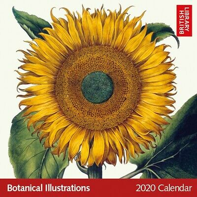 Botanical Illustrations 2020 Square Calendar – British Library Collection