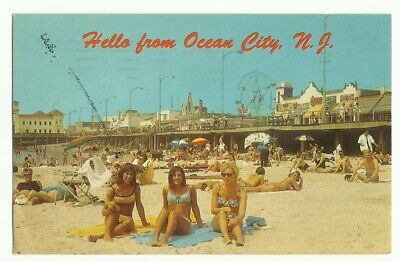 Vtg PC ~ Hello from Ocean City NJ New Jersey Pinup Bathing Beauties Postcard