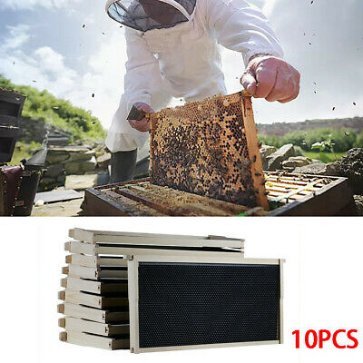 Beehive 10 Frame Add-On 10 Deep Replacement Frames Langstroth Beekeeping UK