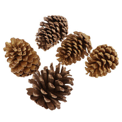 Pack of 5 Decorative Pine Cones for Home Party Christmas Ornament Decoration