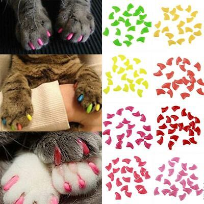 20pcs Anti-Scratch Soft Rubber Pet Dog Cat Kitten Paw Claw Nail Caps Cover NEW