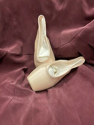 Gaynor Minden Pointe Shoes - All New