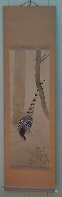 Large Vintage Japanese or Chinese Painted Scroll W/Pheasant & Spider, Signed!