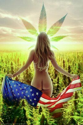 FREEDOM - SEXY WEED POSTER - 24 x 36 - MARIJUANA POT FLAG