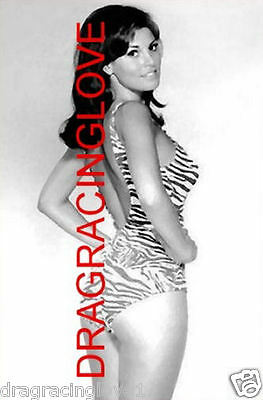"""Gorgeous Actress/Sex Symbol """"Raquel Welch"""" SEXY GLOSSY 8x10 """"Pin-Up"""" PHOTO!"""