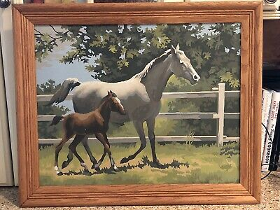 Vintage 1960's Paint By Number HORSE PONY PONIES Framed