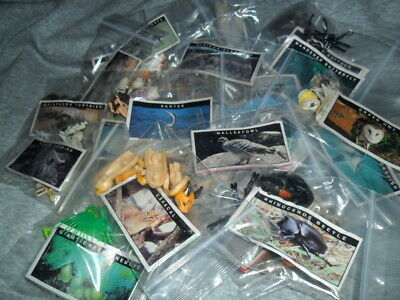 Yowies Series 5 Full Set Of 30,  Rare Papers / Rare Early Yowies