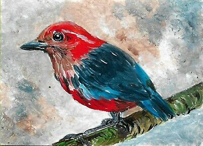 ACEO Original Painting Art Card Acrylic Blue Banded Pitta 100% Hand Painted