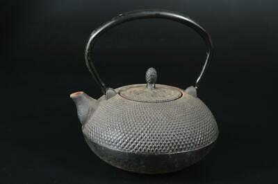 T7110: Japanese Iron Arare pattern TEA KETTLE Teapot Tetsubin Tea Ceremony