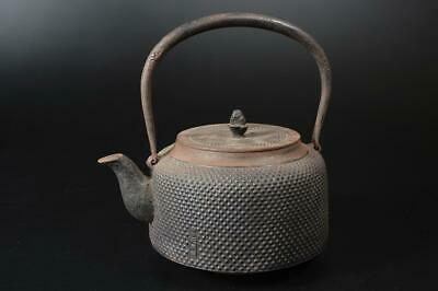 T9319: Japanese XF Old Iron Arare pattern TEA KETTLE Teapot Tetsubin