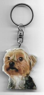 Yorkshire Terrier  Chien Porte Cles / Dogs K.fob